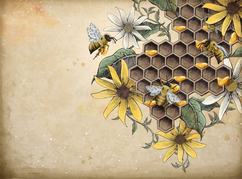 Honingbij en bijenstal stock illustratie