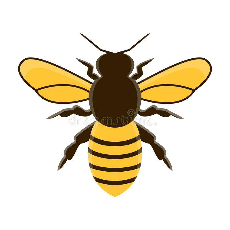 Honingbij moderne vlakke vector Geïsoleerdeo illustratie vector illustratie