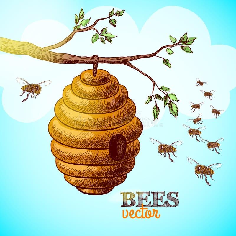 Honingbijen en bijenkorf op de achtergrond van de boomtak stock illustratie