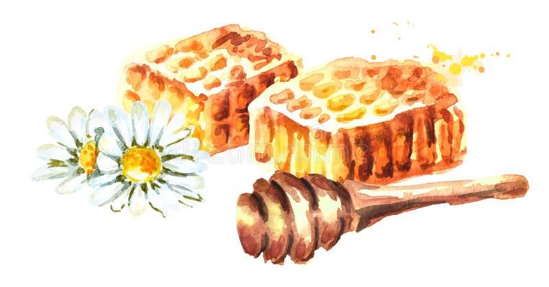 Honingraat met honingsdipper Waterverfhand getrokken illustratie royalty-vrije illustratie