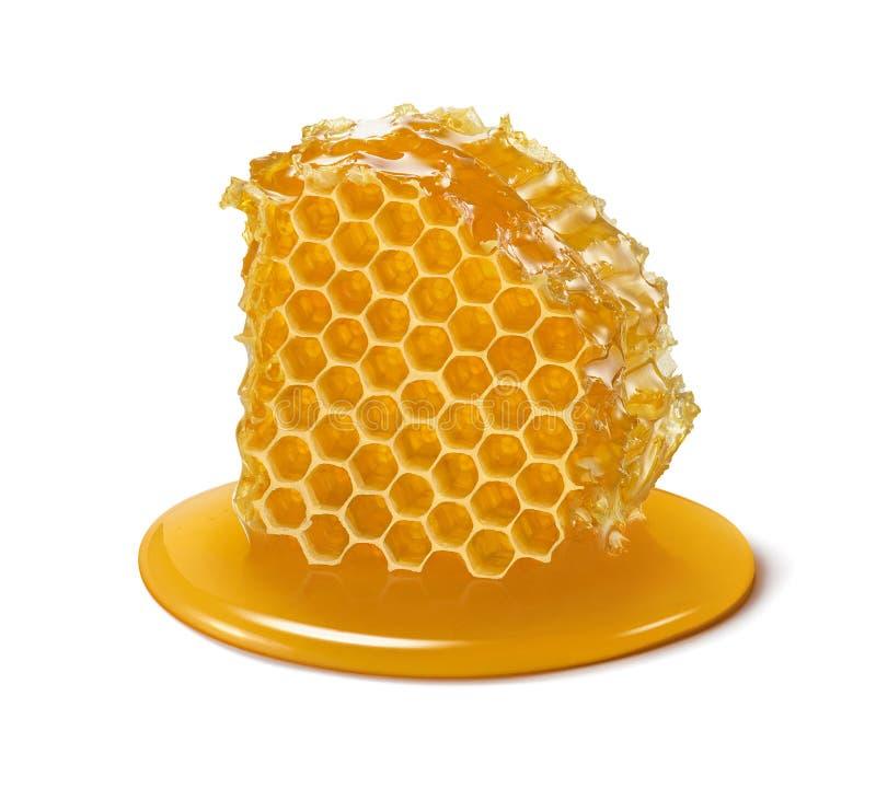 Honingraatplak Het stuk van de honingscel op witte achtergrond wordt geïsoleerd die stock foto's