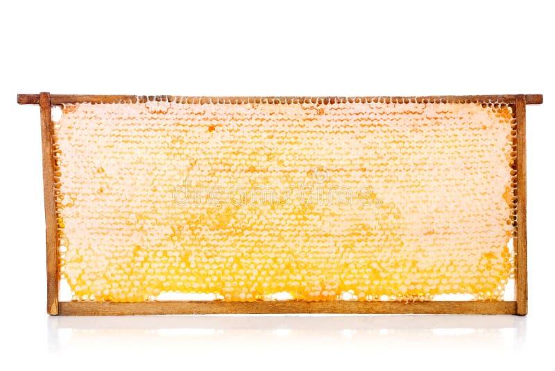 Honingraten op een houten frame royalty-vrije stock foto