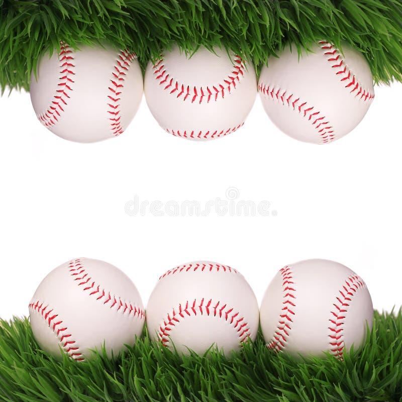 honkbal Ballen op Groen geïsoleerd Gras stock foto's