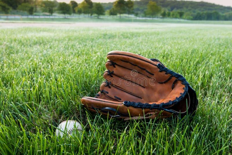 Honkbal en handschoen op gras in de vroege lente van de ochtenddauw royalty-vrije stock foto