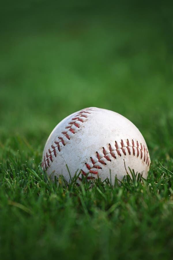 Honkbal in outfield stock fotografie