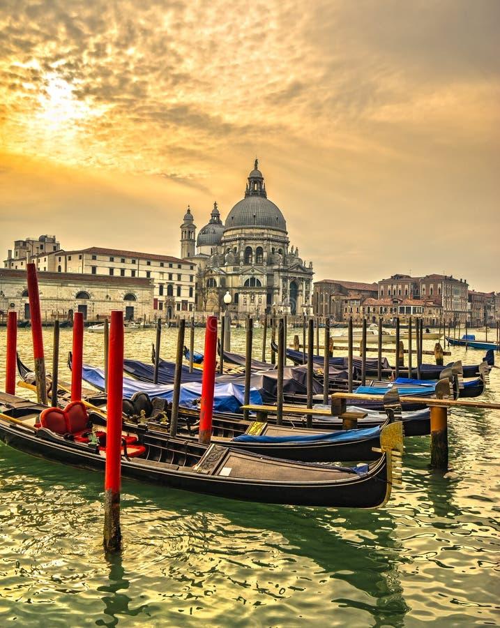Honnör för BasilicaSanta Maria della, Venedig, Italien arkivfoton