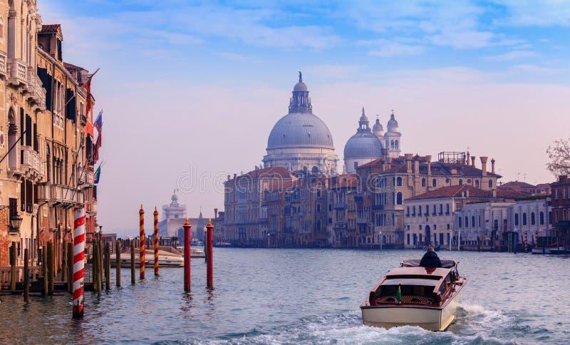 Honnör för BasilicaSanta Maria della, Venedig, Italien royaltyfri bild