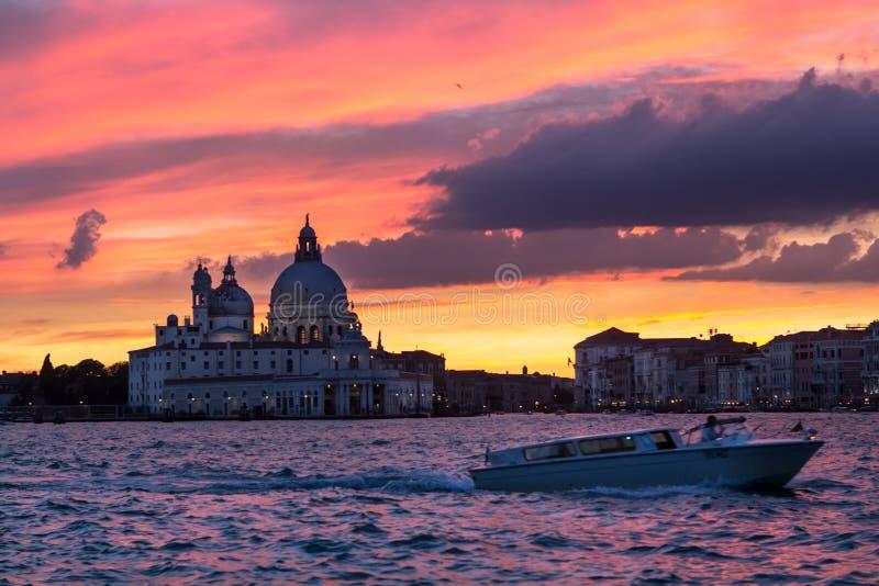 Honnör för basilikaSanta Maria della på solnedgången, Venedig royaltyfri bild