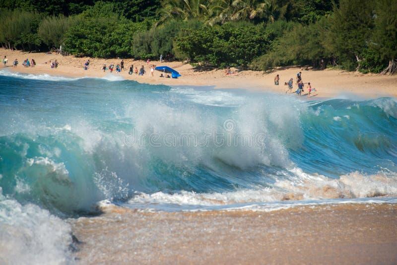 HONOLULU, U.S.A. - AUGUSTO, 14 2014 persone divertendosi alla spiaggia dell'Hawai fotografia stock libera da diritti