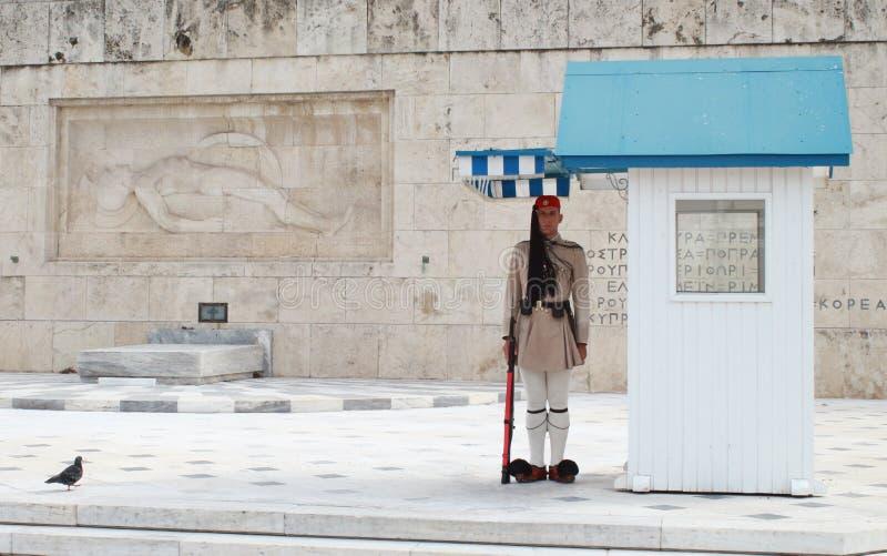 Honor guard of evzones, elite greek soldiers royalty free stock image