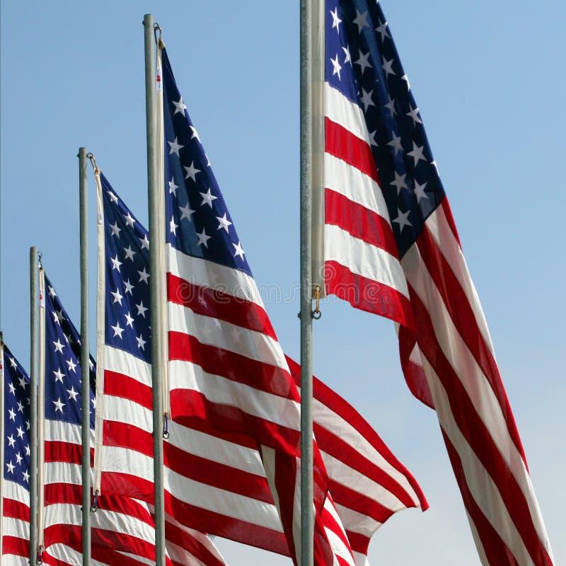 Honoring gli eroi caduti - bandiere americane sul Giorno dei Caduti fotografia stock