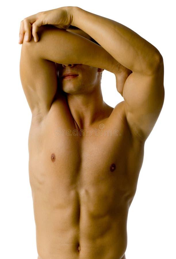 Download Honteux image stock. Image du attrayant, biceps, fond - 3130963
