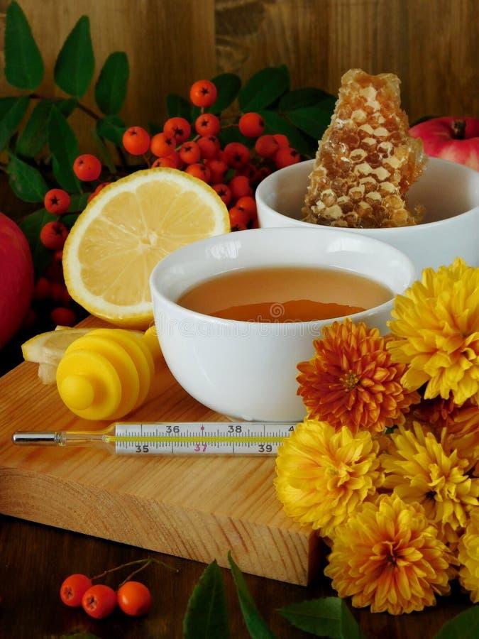 Honung, citron, rönnbär och termometer Begrepp av behandling av säsongsbetonad förkylning arkivfoto