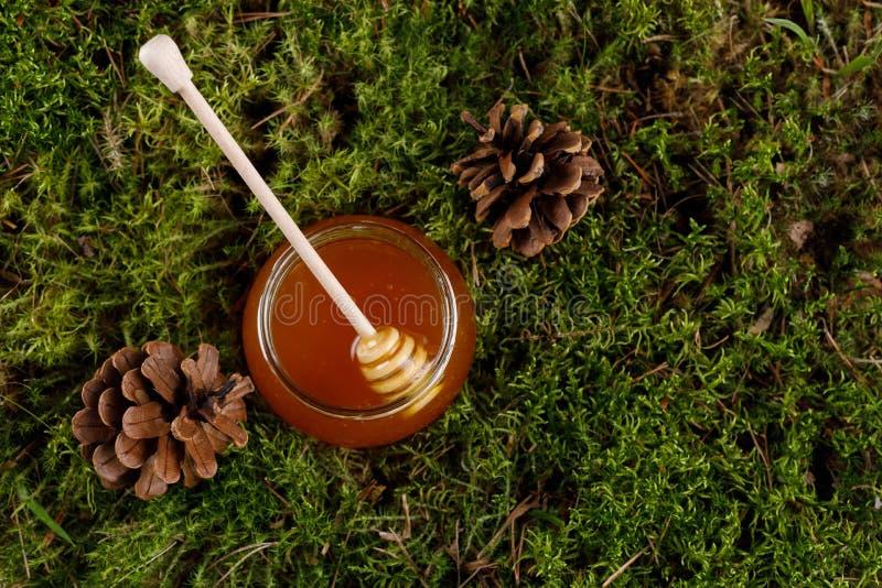 Honung i en exponeringsglaskrus med en trähonungpinne på en bakgrund av skogmossa arkivbild