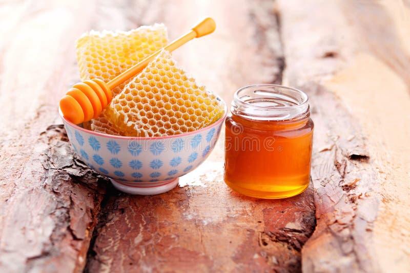 Honung med honunghårkammen arkivbilder