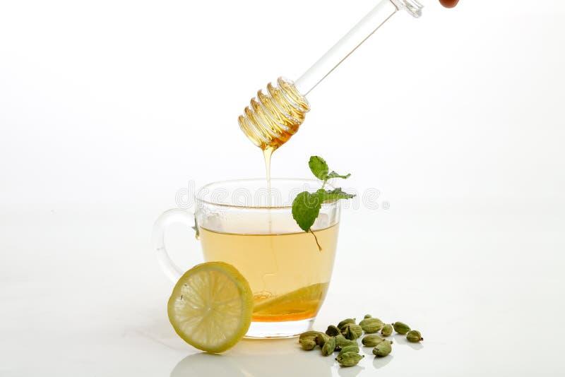 Honung- och citronte arkivfoto