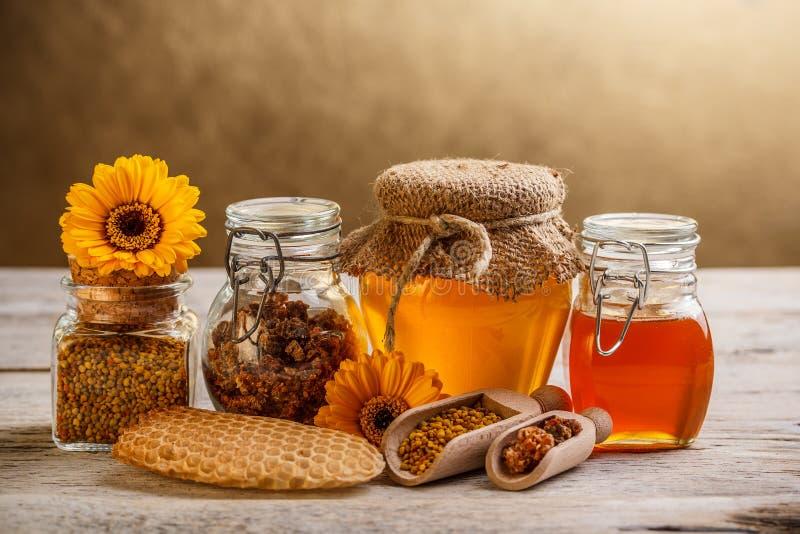 Honung och pollen royaltyfria bilder