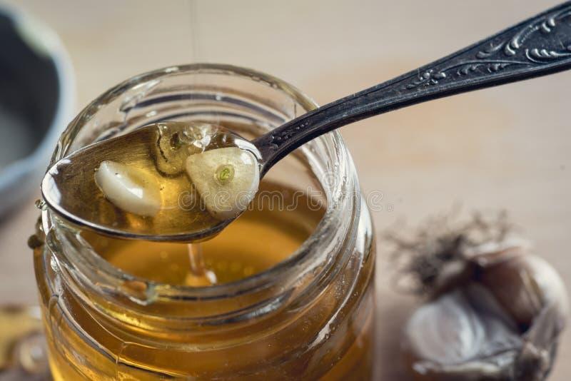 Honung och vitlök royaltyfria foton