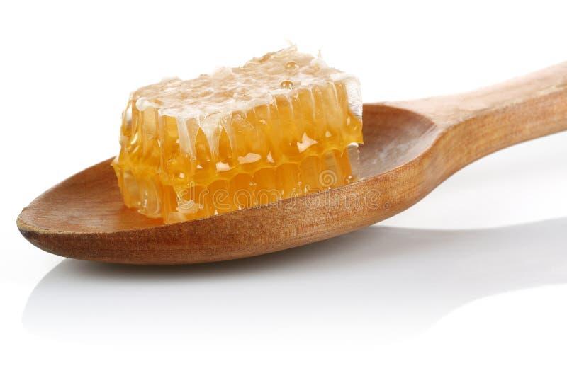 Honungskaka i träsked på vit bakgrund royaltyfri bild