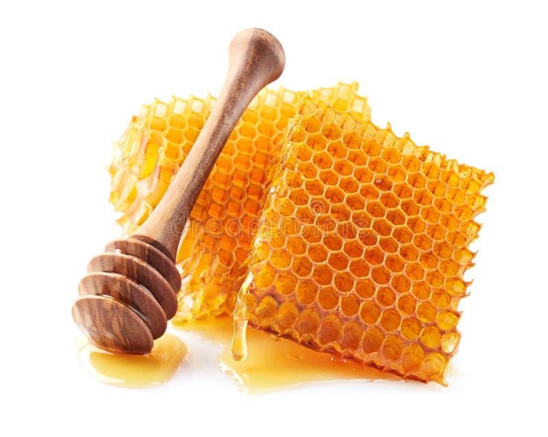 Honungskaka med skeden i closeup arkivfoto