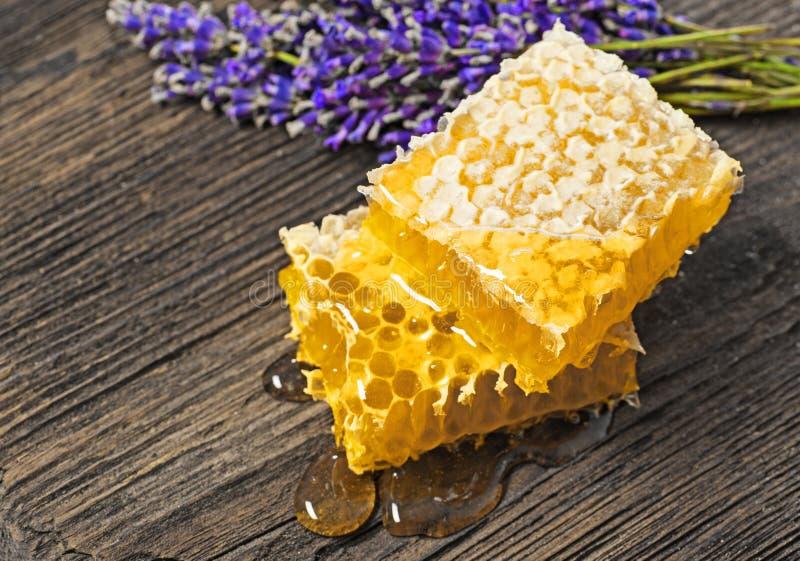Honungskaka på en trätabell fotografering för bildbyråer