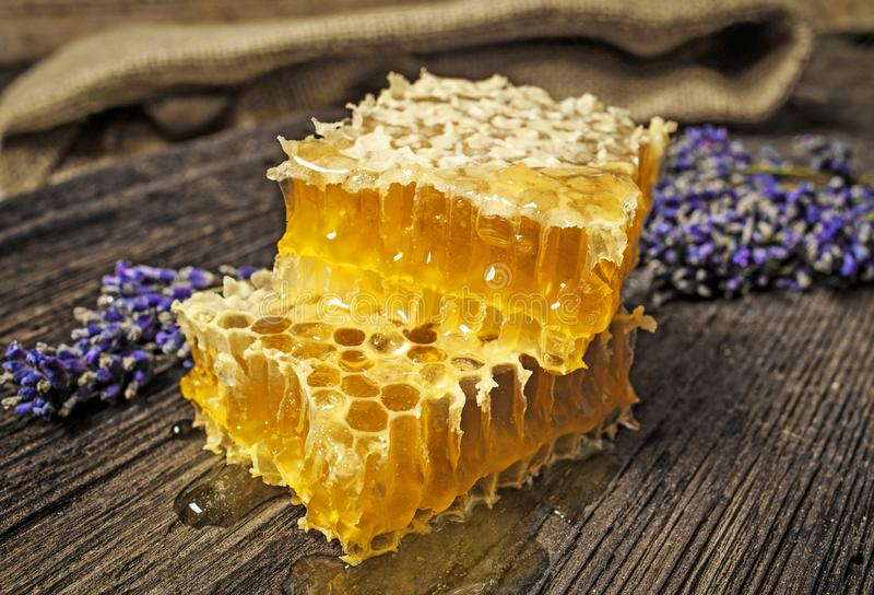 Honungskaka på en trätabell arkivbilder