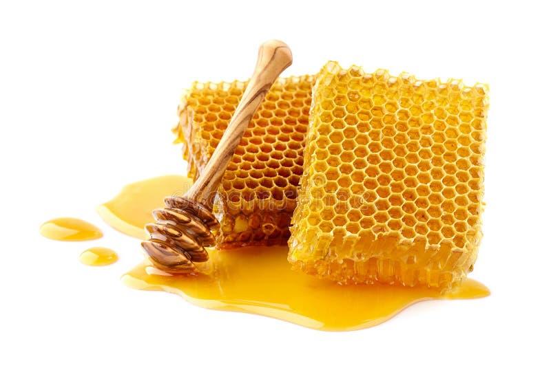 Honungskakor med träskeden arkivfoton