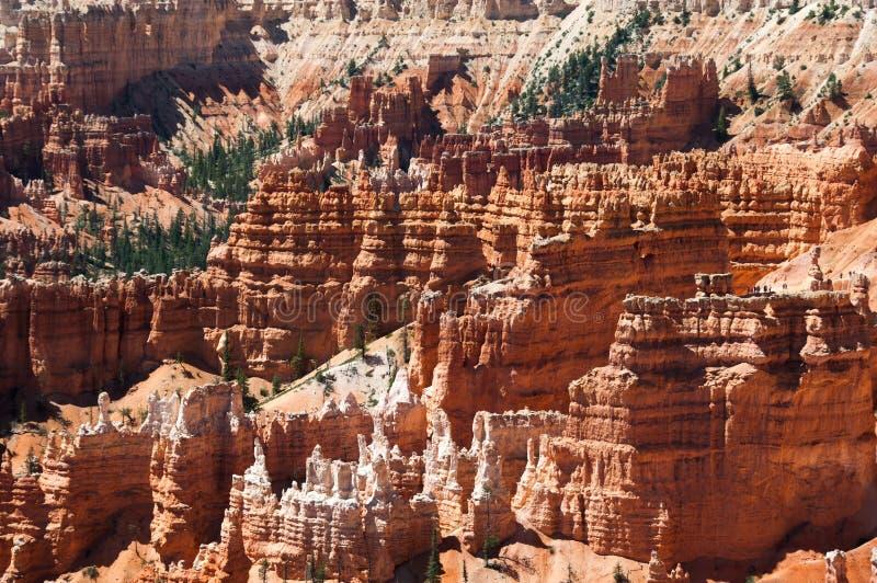 Hoodoo στο εθνικό πάρκο φαραγγιών του Bryce, Γιούτα, Ηνωμένες Πολιτείες στοκ φωτογραφίες