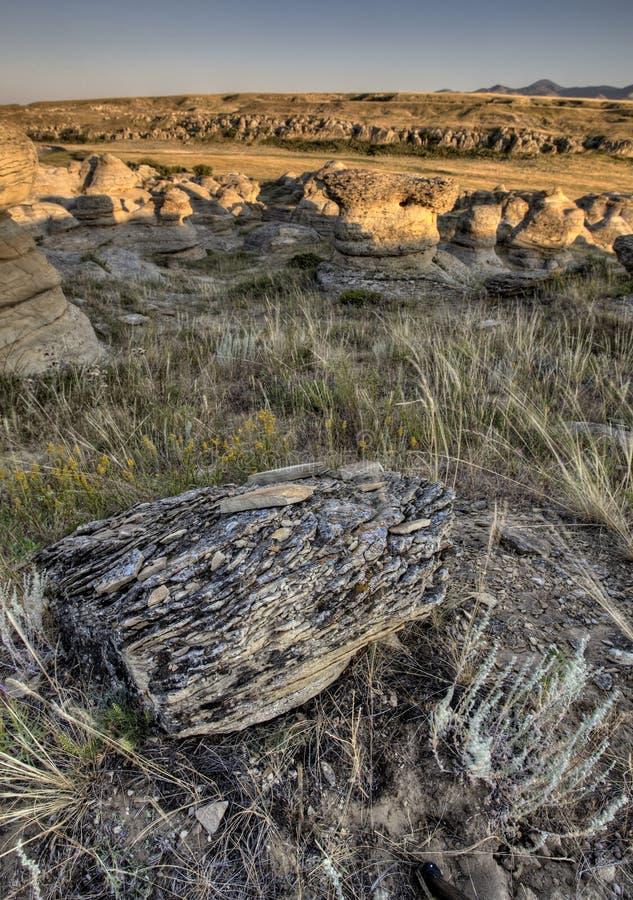 Hoodoo Badlands Alberta Canada Stock Images