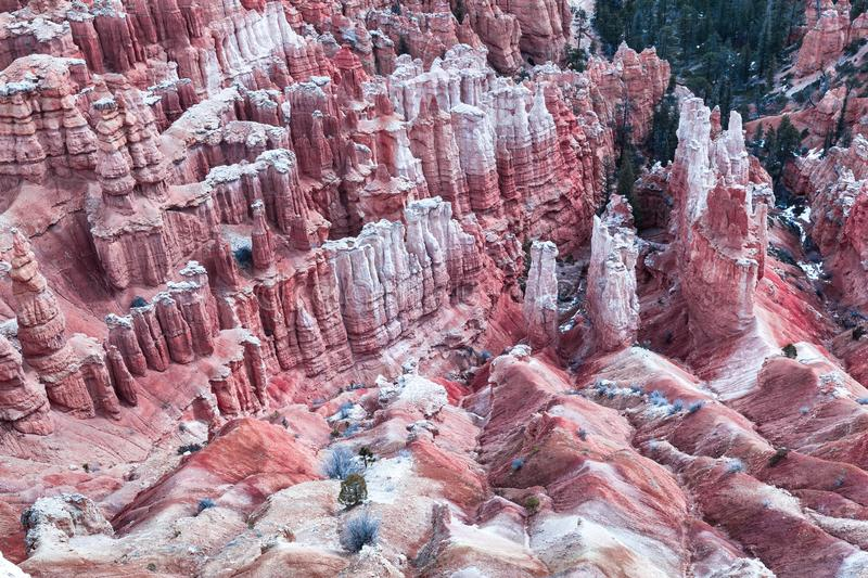 Hoodoo Landscape Of Bryce Canyon Closeup In A Pink Tone, USA royalty free stock photos