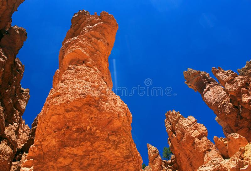 Hoodoo landscape at Navajo loop trail, Bryce Canyon National Park. Bulbous spires called hoodoos. The delicate climatic balance between snow and rain ensures royalty free stock images