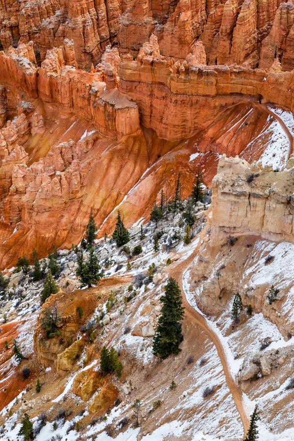 Hoodoo Rocks With Pine Trees In Bryce Canyon, USA royalty free stock photography