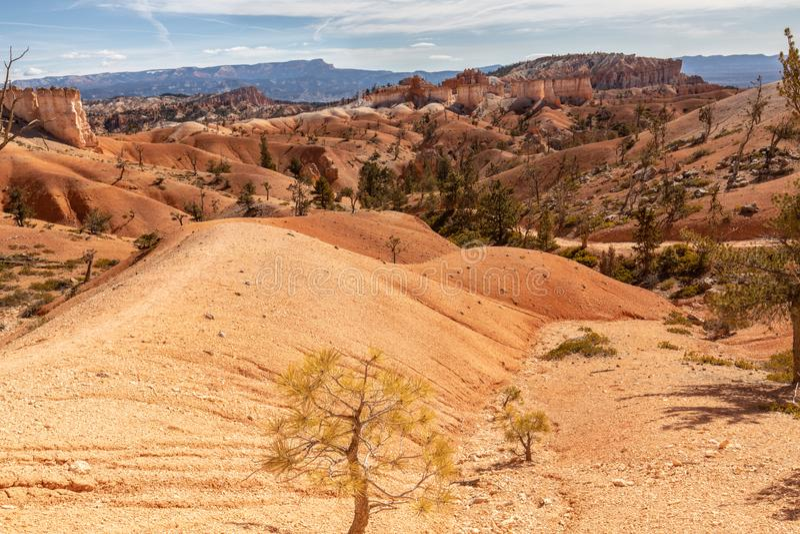 Hoodoos στο εθνικό πάρκο φαραγγιών του Bryce, Γιούτα, ΗΠΑ στοκ εικόνα με δικαίωμα ελεύθερης χρήσης