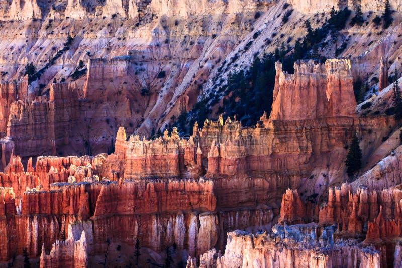 Hoodoos каньона Bryce на заходе солнца стоковое изображение