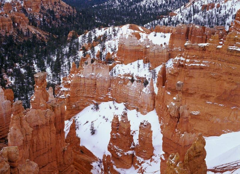 hoodoos каньона bryce стоковое изображение rf