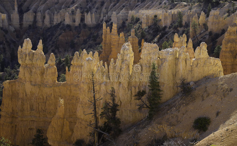 Hoodoos - Bryka jaru park narodowy obraz royalty free