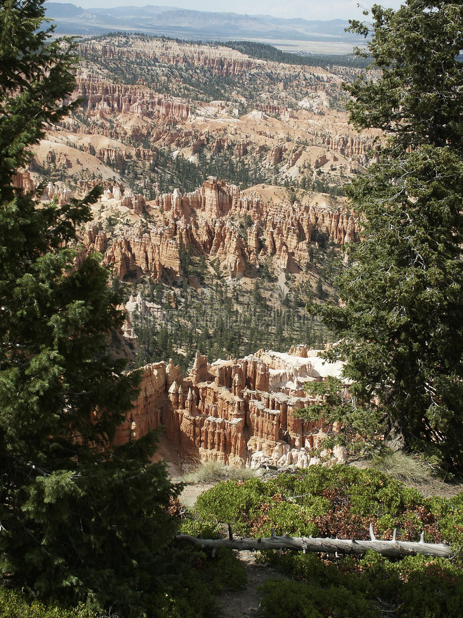 Free Hoodoos Of Bryce Canyon Royalty Free Stock Images - 1037599