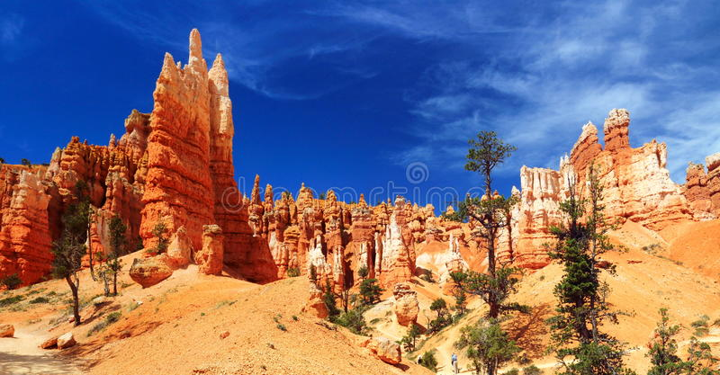 Hoodoos in Queens Garden in Bryce Canyon National Park, Utah, USA royalty free stock images