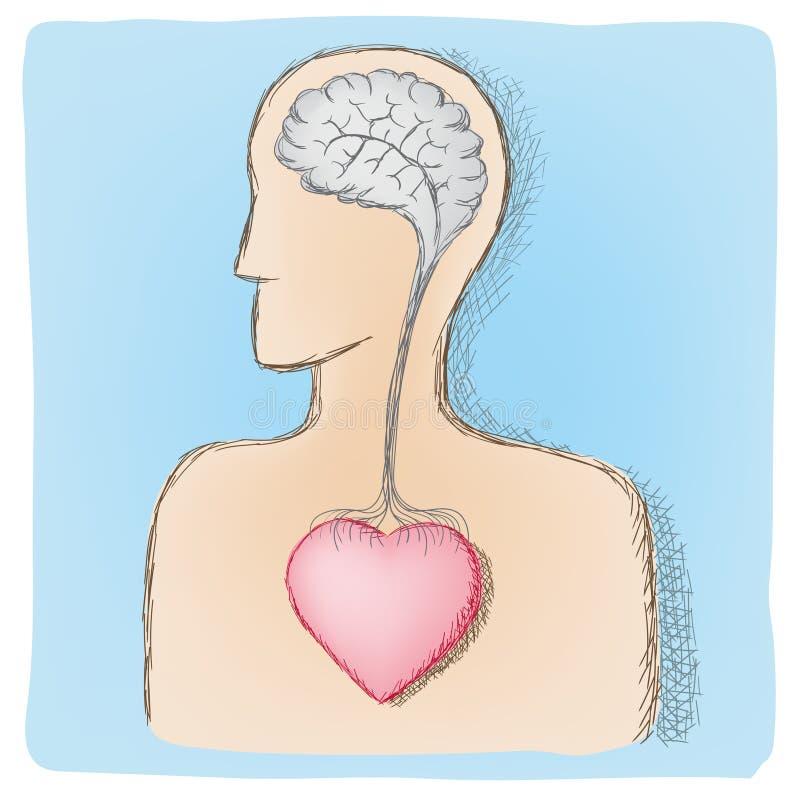Hoofd en hart verbonden organen vector illustratie