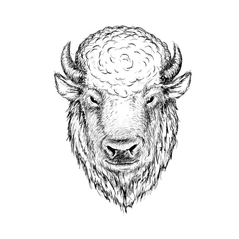 Hoofd van buffels vector illustratie