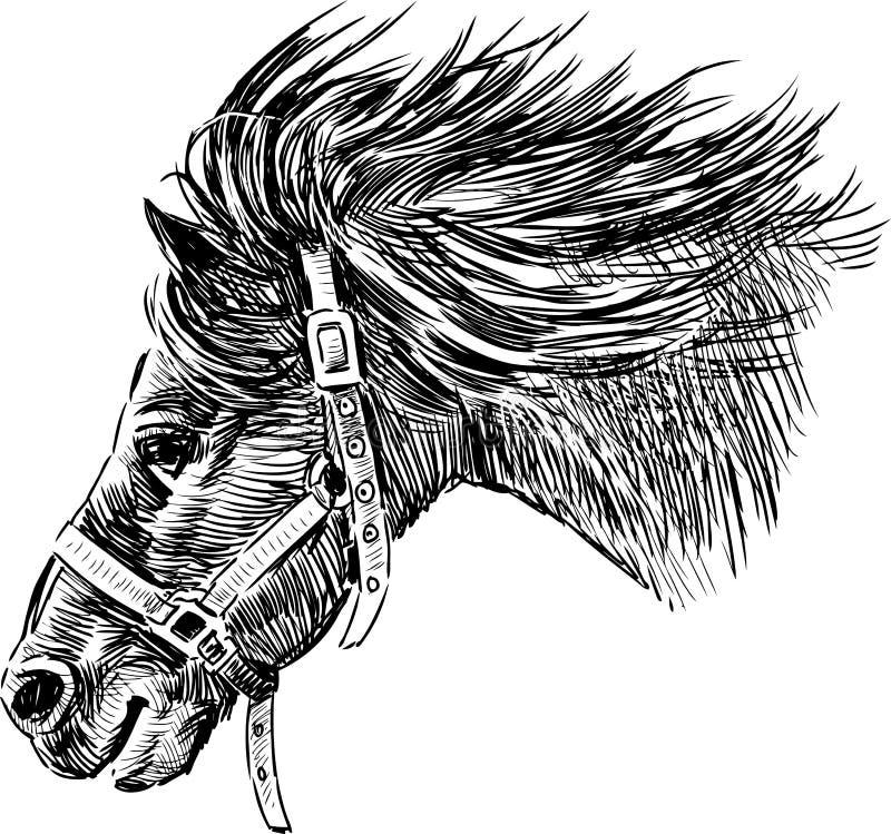 Hoofd van het lopen paard stock illustratie