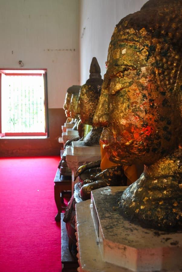 Hoofd van het Standbeeld thailan Wat Chang Phra Nakhon Si Ayutthaya van Boedha stock afbeelding