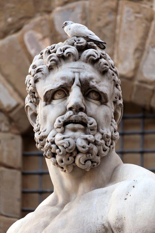 Hoofd van het standbeeld van Hercules stock foto's