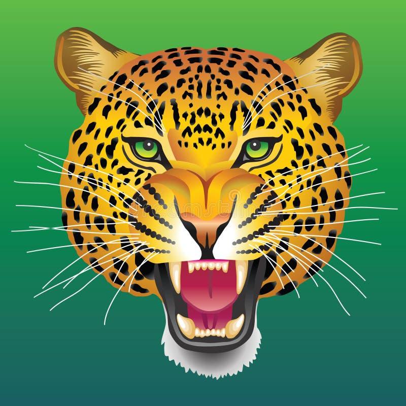 Hoofd van luipaard stock foto's