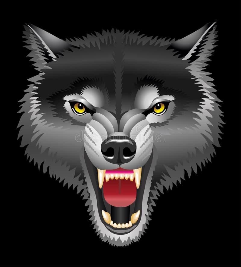 Hoofd van wolf royalty-vrije stock fotografie