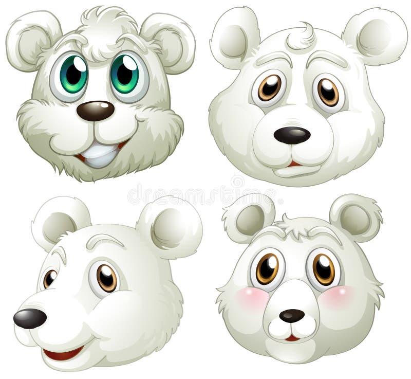 Download Hoofden van ijsberen vector illustratie. Illustratie bestaande uit draagt - 39117005