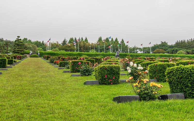 Hoofdgebied binnen de Verenigde Naties UNO Memorial Cemetery van Koreaanse Oorlog in Seoel, Zuid-Korea, Azië royalty-vrije stock foto's
