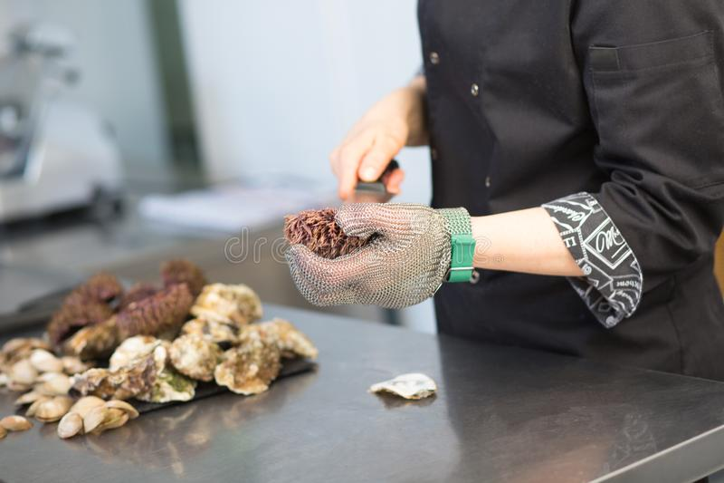 Hoofdklasse De chef-kok snijdt zeeëgel in de keuken van een restaurant Close-up van een hand met een mes in een metaalhandschoen  royalty-vrije stock fotografie