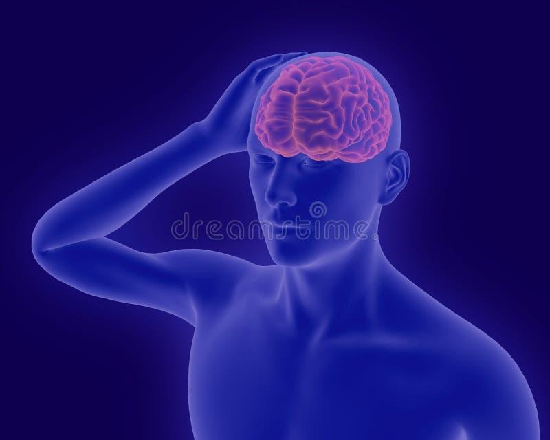 Hoofdpijn x-ray beeld van menselijk lichaam met zichtbare hersenen 3d rende vector illustratie