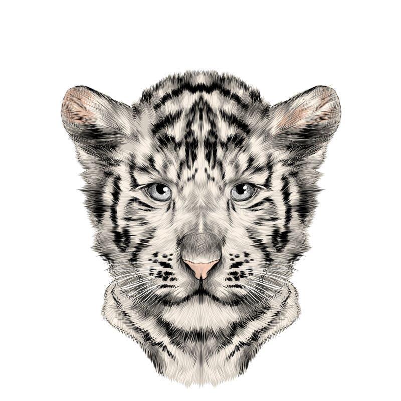 Hoofdwelp de witte vector van de tijgerschets stock illustratie
